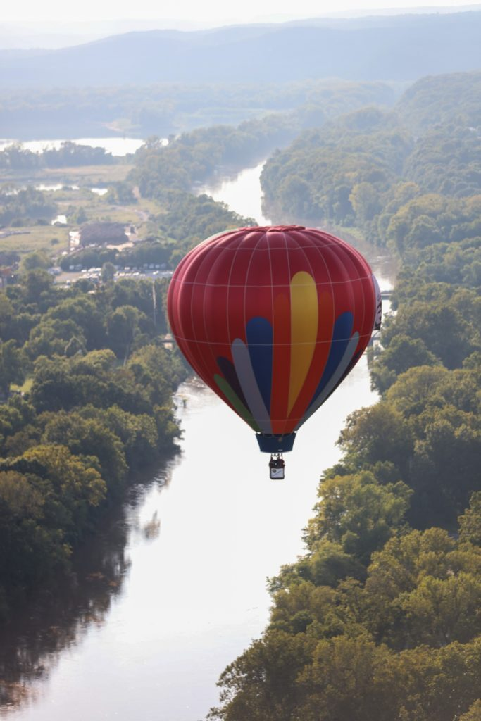 roycatonballoon